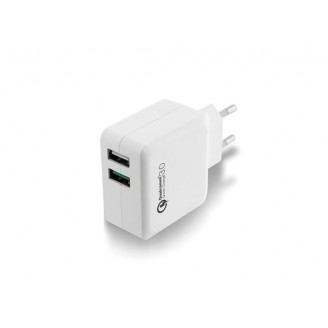 EWENT - 2-POORTS USB-LADER 110 - 240 VAC -  QUICK CHARGE 3.0 POORT